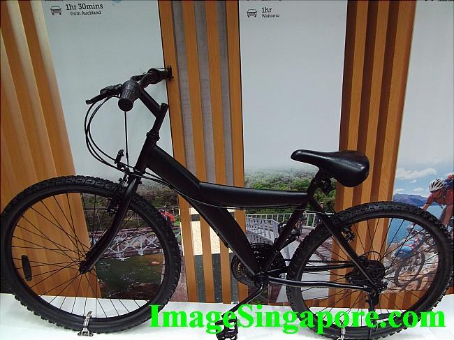 Beautiful Black Bicycle.
