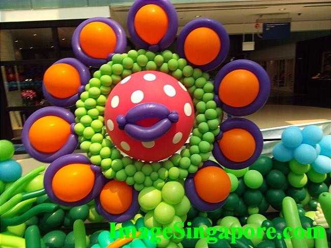 Cheerful Balloon Flower