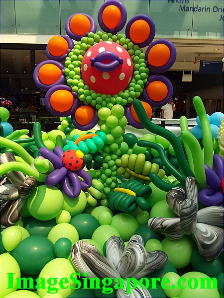 This Balloon landscape is beautiful.
