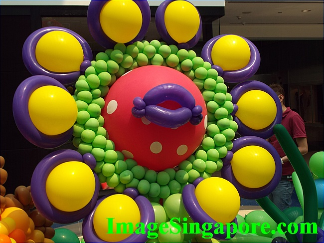 Bright balloon flower to cheer up your day.