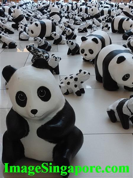 1600 Pandas Exhibition at City Square Johor Bahru.